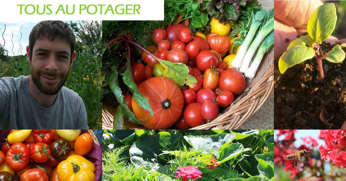 Conseils pratiques au jardin potager biologique for Au jardin potager