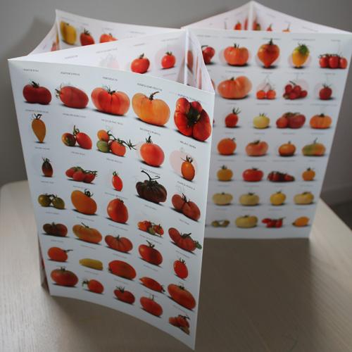 Choisir ses variétés de tomates