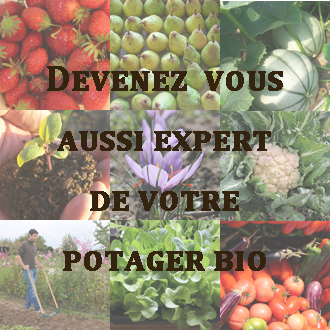 formation-expert-potager