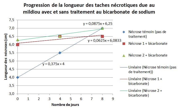 progression-necroses-mildiou-tomate